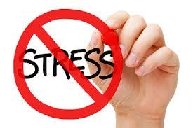 stress free pic